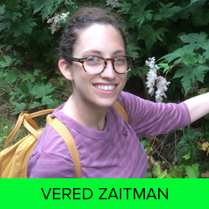 Vered Zaitman