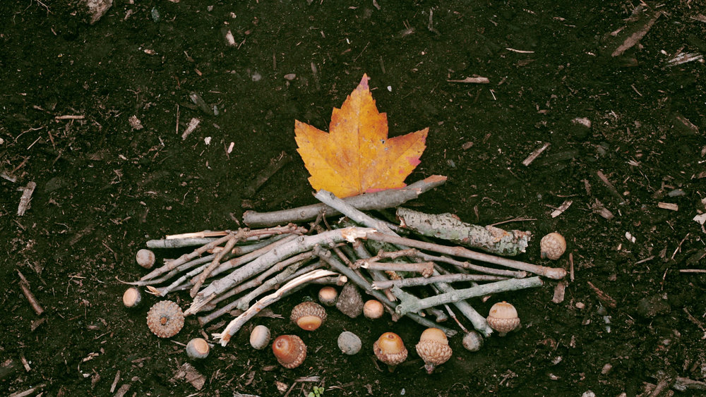 Fall Campfire Photo.jpg