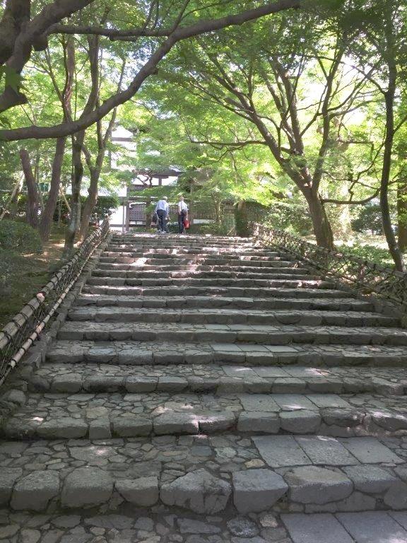 Der Zauber eines Zengartens:  http://www.zeit.de/2014/46/kyoto-zen-garten-ryoanji/seite-2