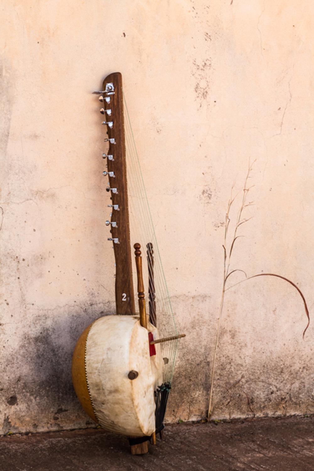 Spot on Mali Music Kora-8.jpg
