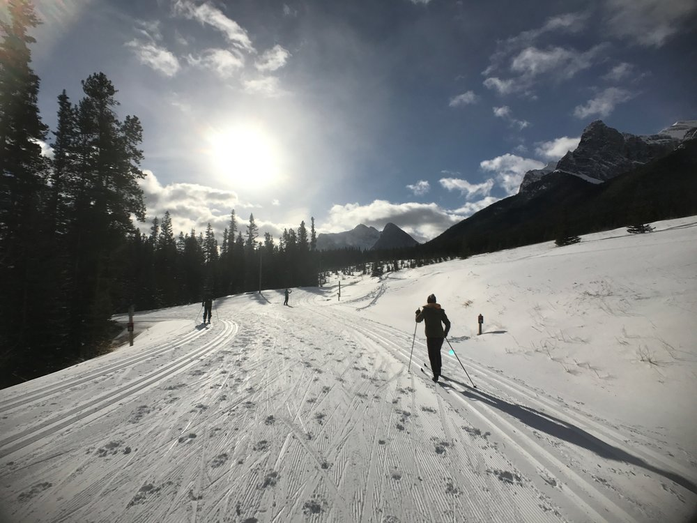 XC skiing at CNC doesn't get much better that's this - 3.5 hours of classic last Saturday.