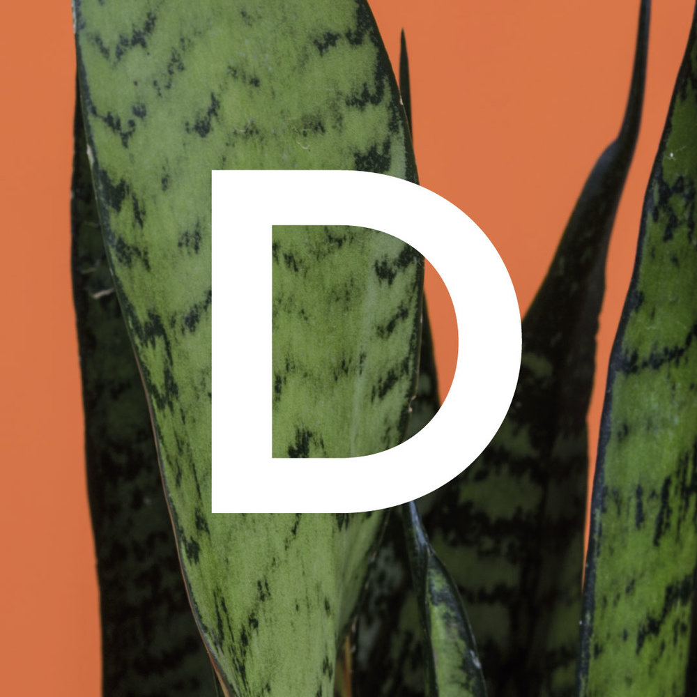 D is for...