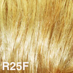 R25F.jpg
