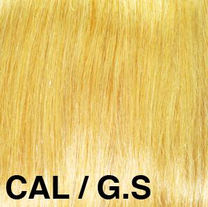 CAL_GS1.jpg