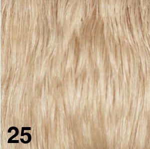 25.jpg