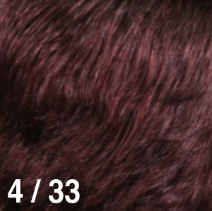 4_33.jpg