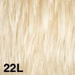 22L50-150x150.jpg
