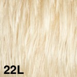 22L45-150x150.jpg