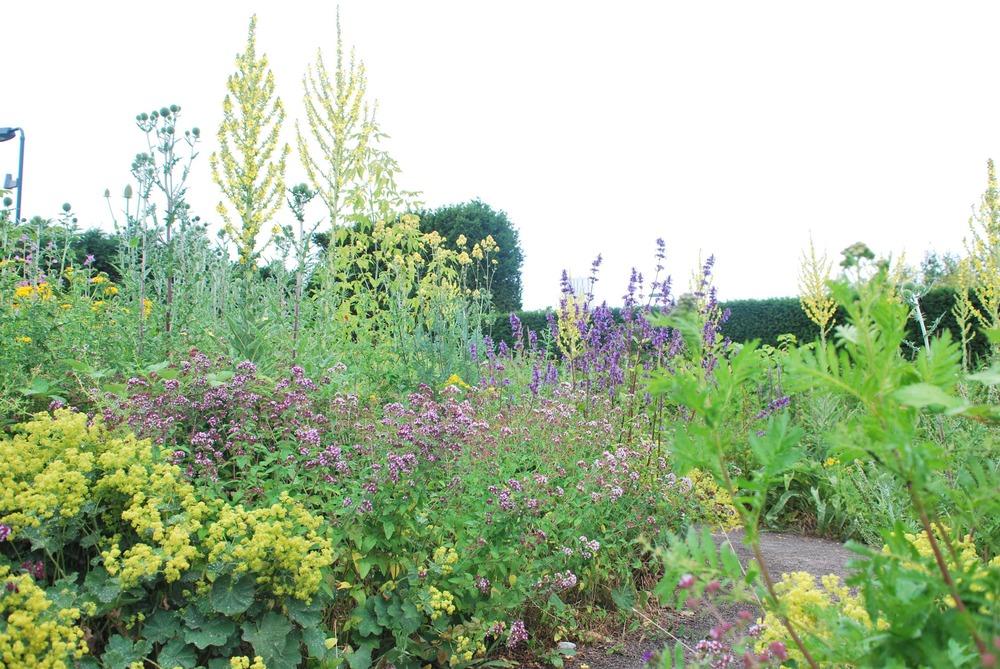 Insektsträdgården