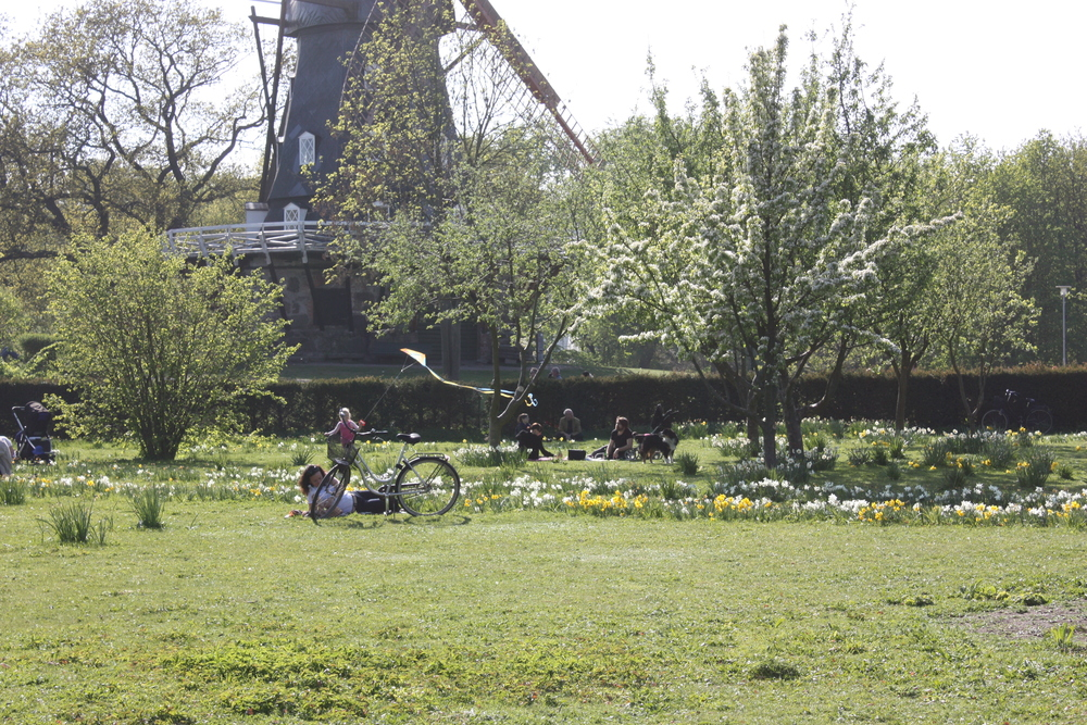 Fruktträdgården och Ängen