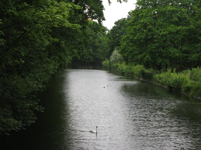 The Tiergarten