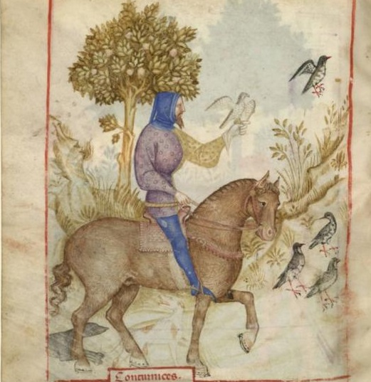 Tacuinum Sanitatis (Paris MS), f72v - Man's hood