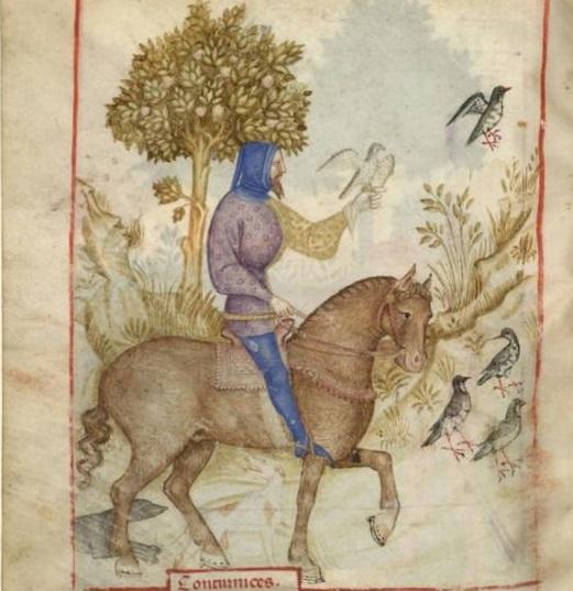 Tacuinum Sanitatis (Paris MS), f72v - Man's hood