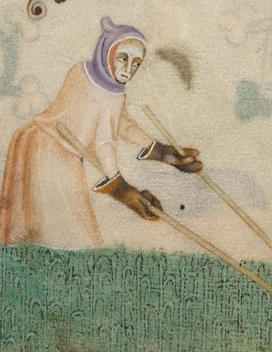 Luttrell Psalter, f172r - Hood & gloves