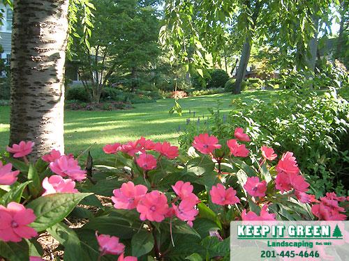 Residential landscape maintenance.  Ridgewood, NJ  07450