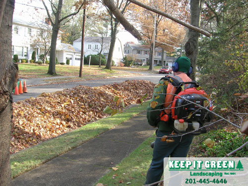 All leaves are thoroughly cleaned from lawn and shrub beds.  Paramus, NJ  07652