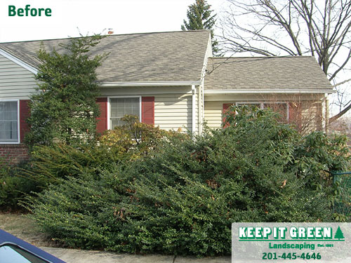 Overgrown shrubs obscure the beauty of this home. Carlstadt, NJ 07072