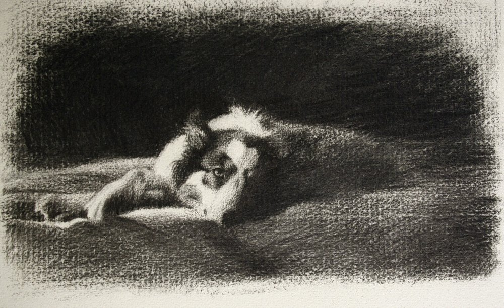lucy-charcoal-1.jpg