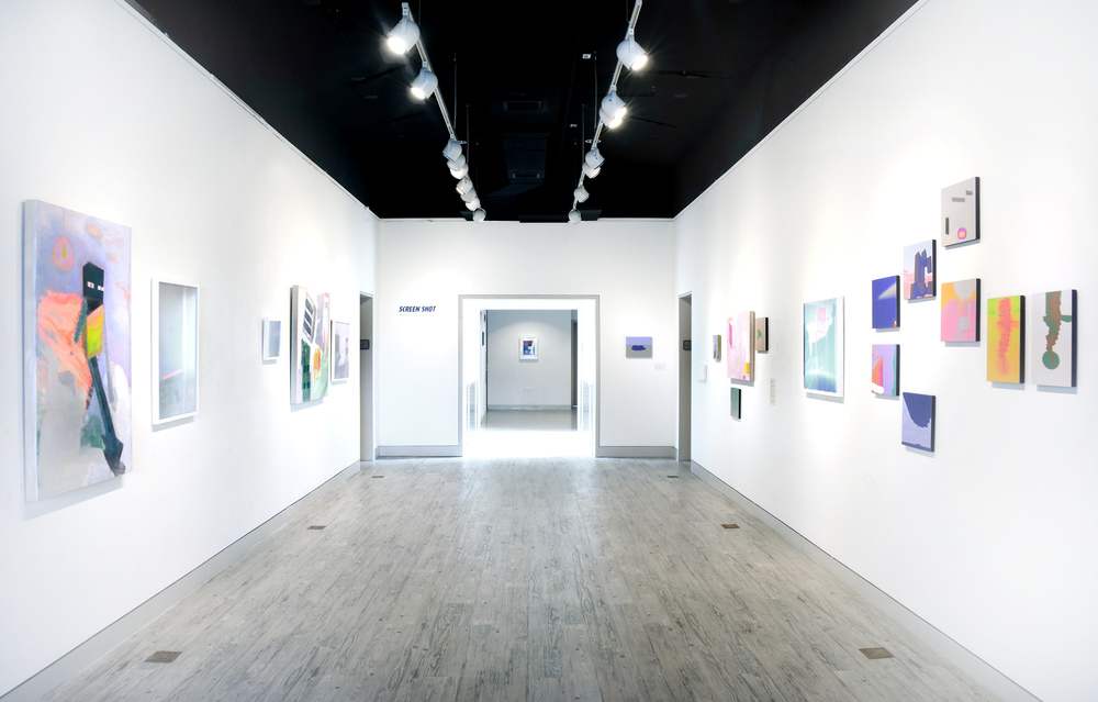 Installation view of  Screenshot  show Arlington Arts Center, Wyatt Gallery July 2015