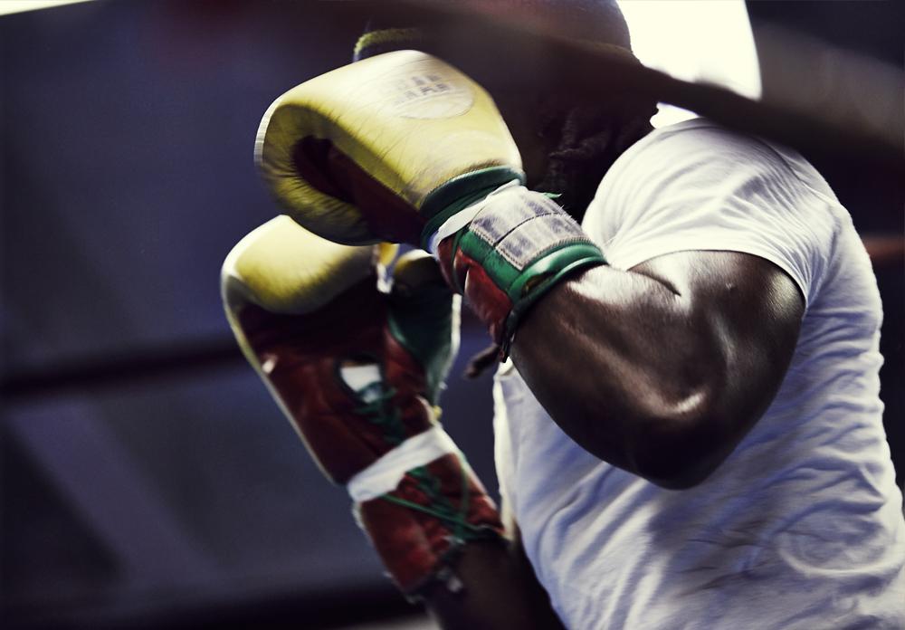 nyx_boxers_9.jpg