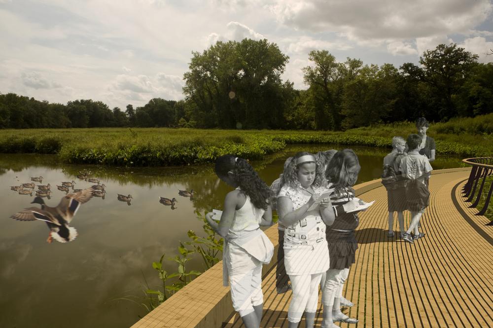 20111109_Killdeer WetlandsD.jpg