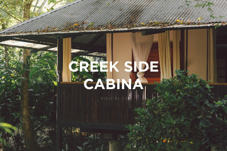 Creekside Cabina.jpg