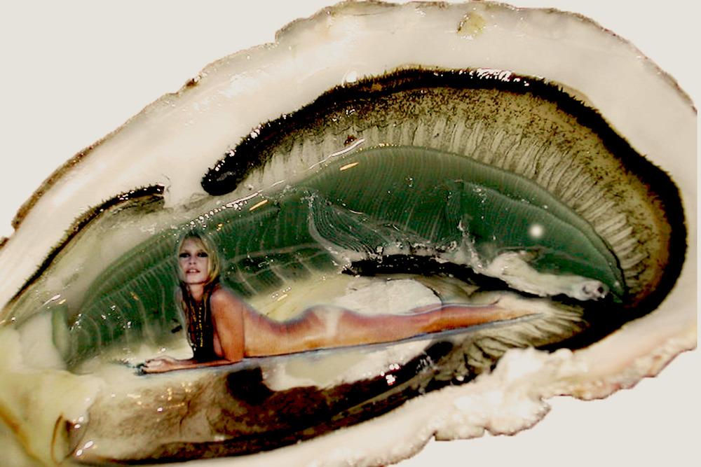 Oyster 2 green.jpg