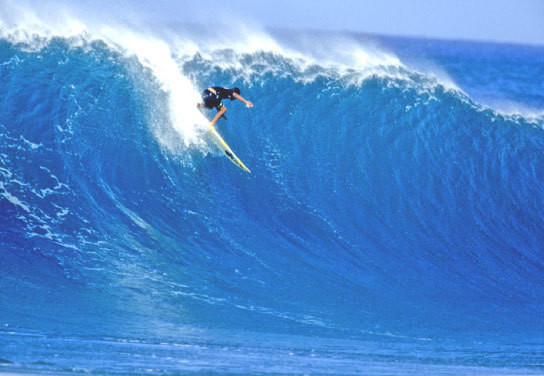 Paying dues at the Pipeline | p. Jeff Divine