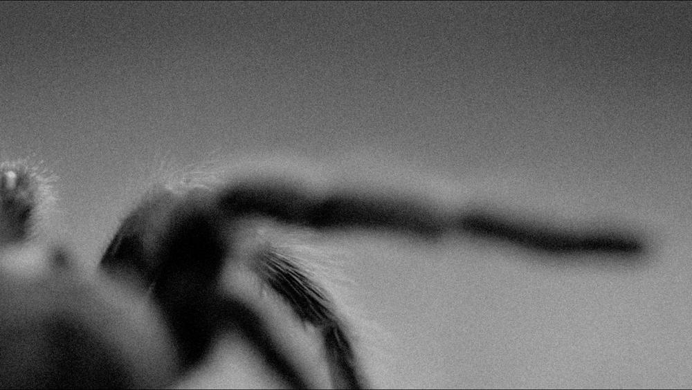 Screen Shot 2014-08-19 at 9.01.03 PM.png