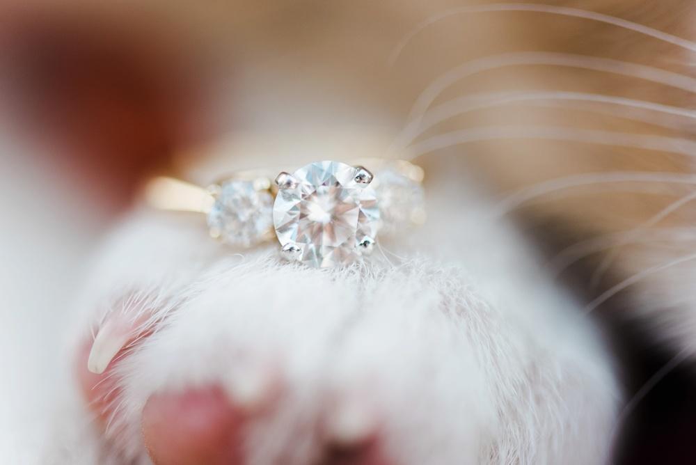 clemson_wedding_photographer_0665.jpg