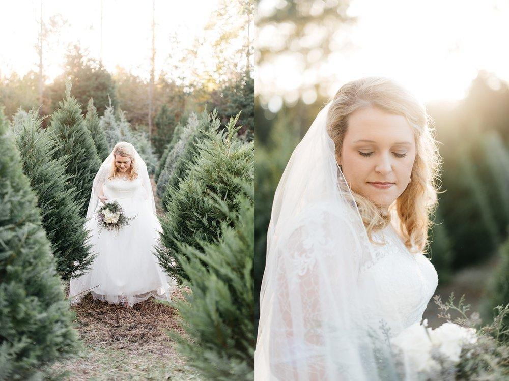 aiken_wedding_photographer_5281.jpg