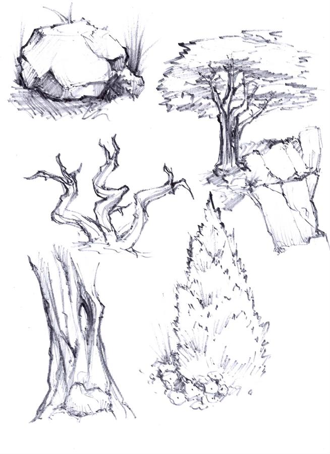Tree_studies_02.jpg