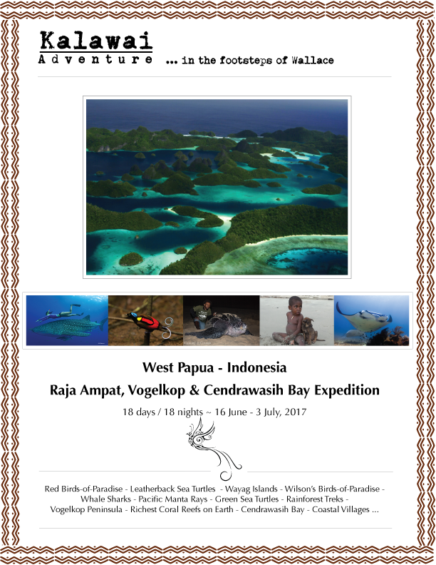RajaAmpat&CendrawasihBay_PutiRaja_Jun-Jul_CoverPage_19Dec16.png