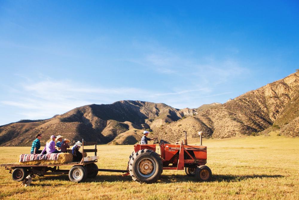 hay ride 1.jpg