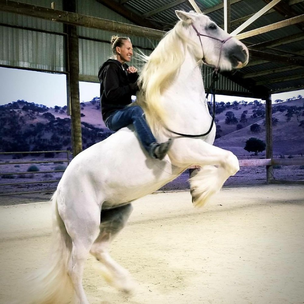 M on White Horse.JPG
