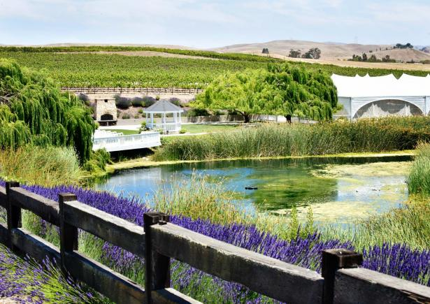 léal-vineyards.jpg