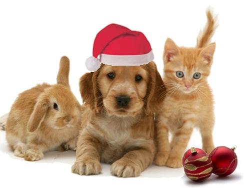 christmas-animals1_large[1]