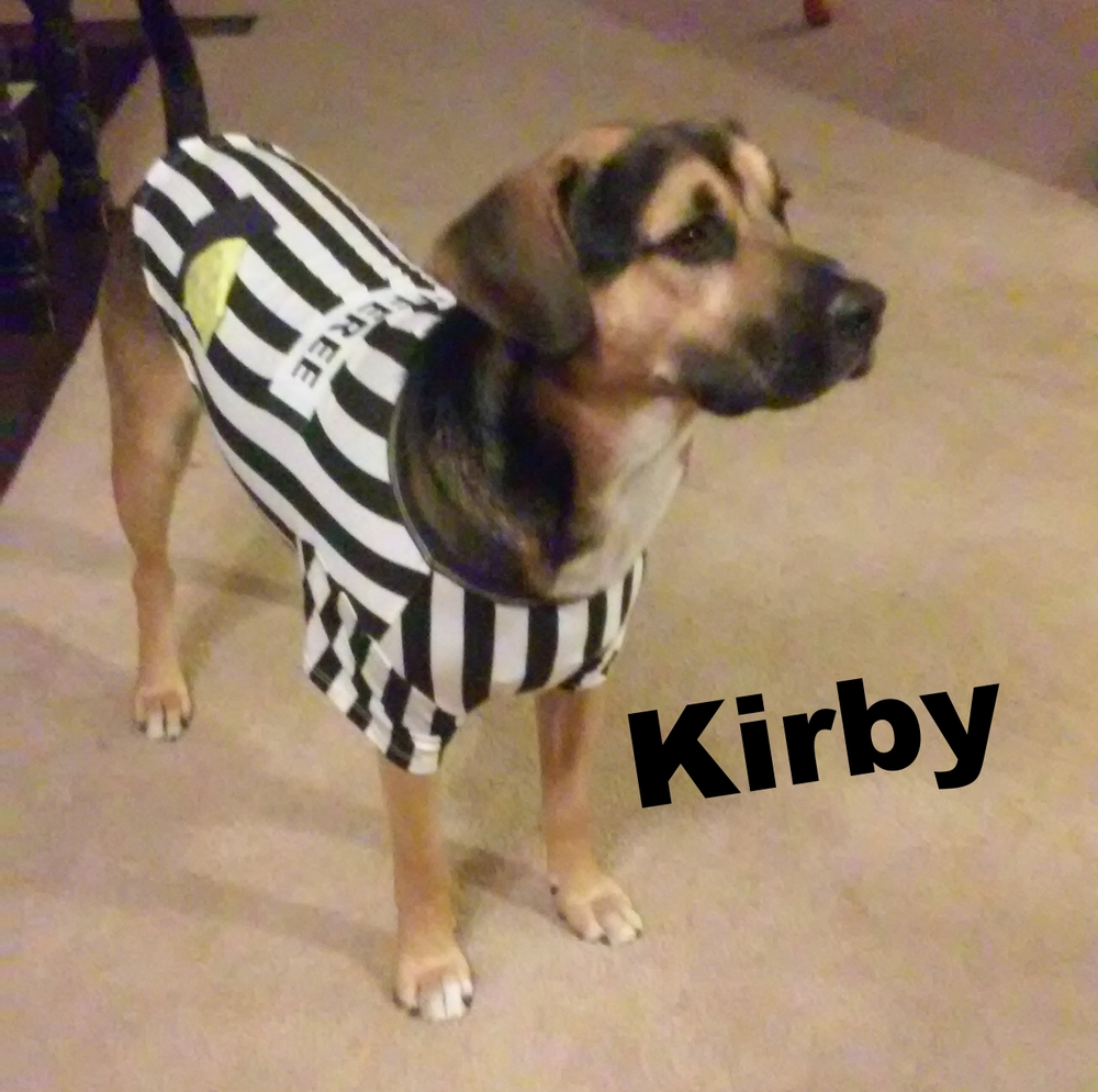 Kirby the rufferee!!