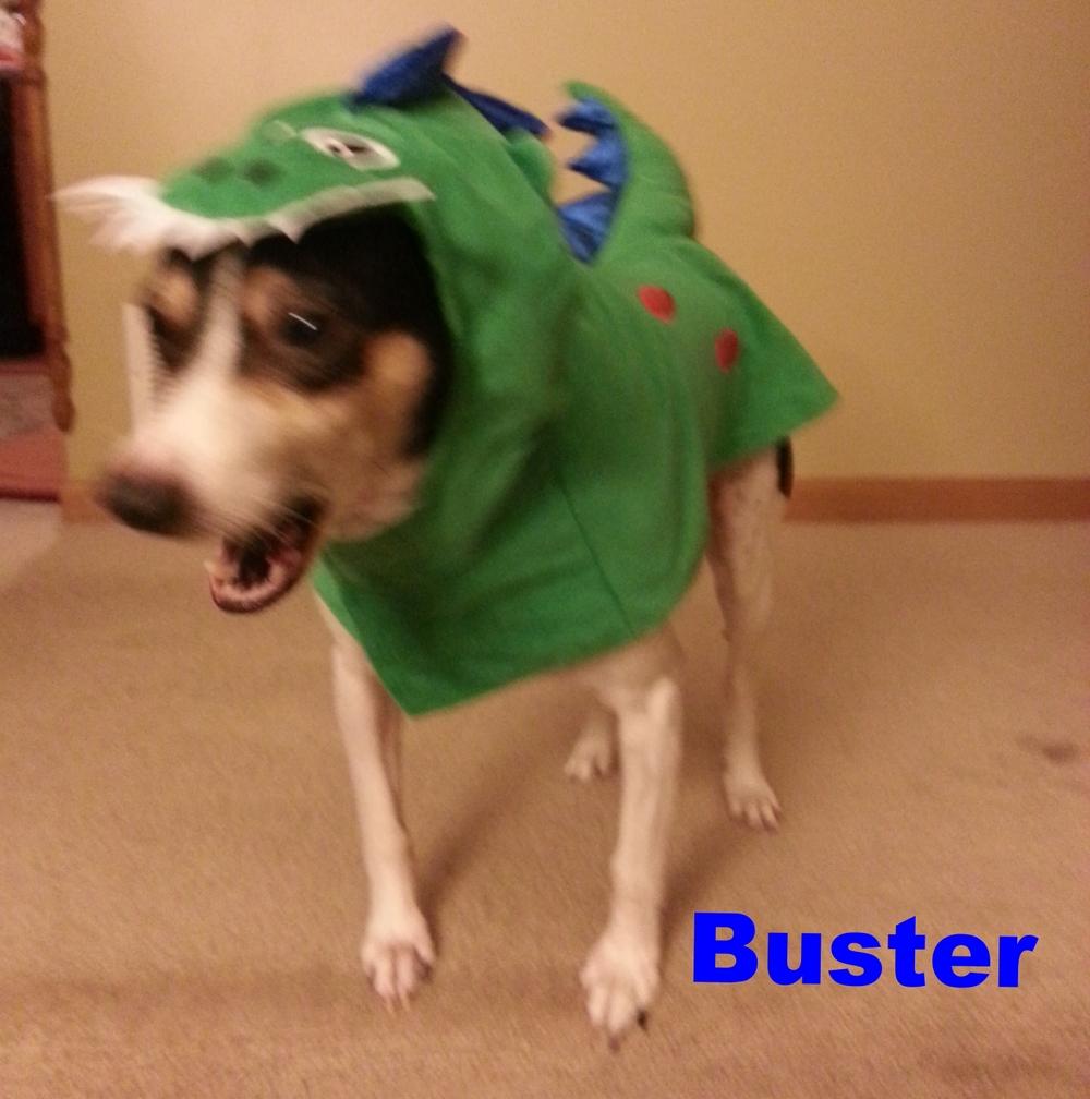 Buster the dinosaur!