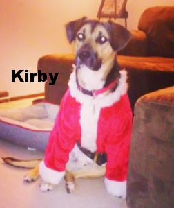 Kirby as Santa Paws!