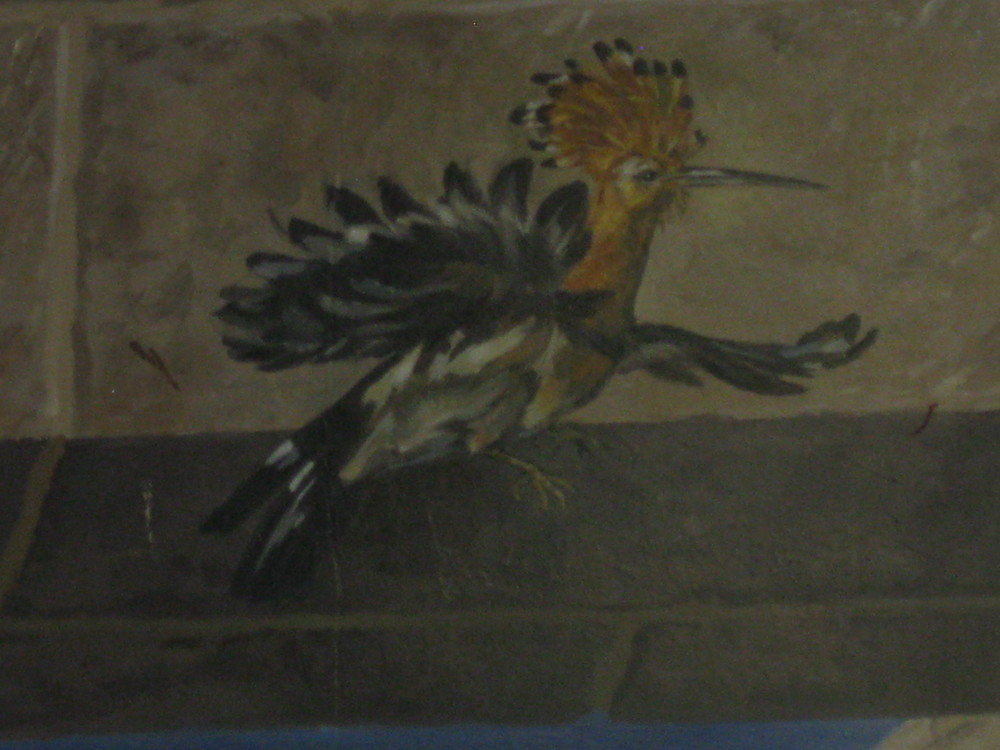 A Hoopoe on a mural inside the Old City of Jerusalem.  The Hoopoe is Israel's national bird.