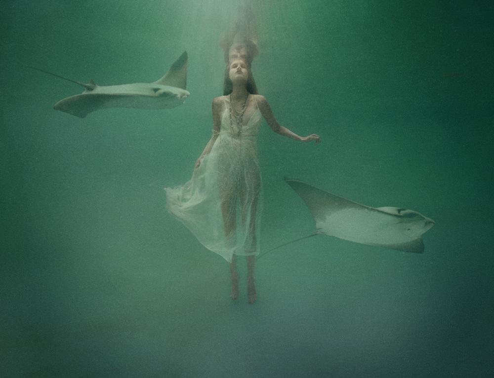 underwater_020913.jpg