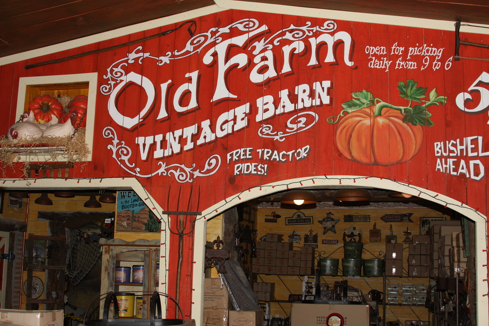 Carlos decorated the store as a barn.JPG