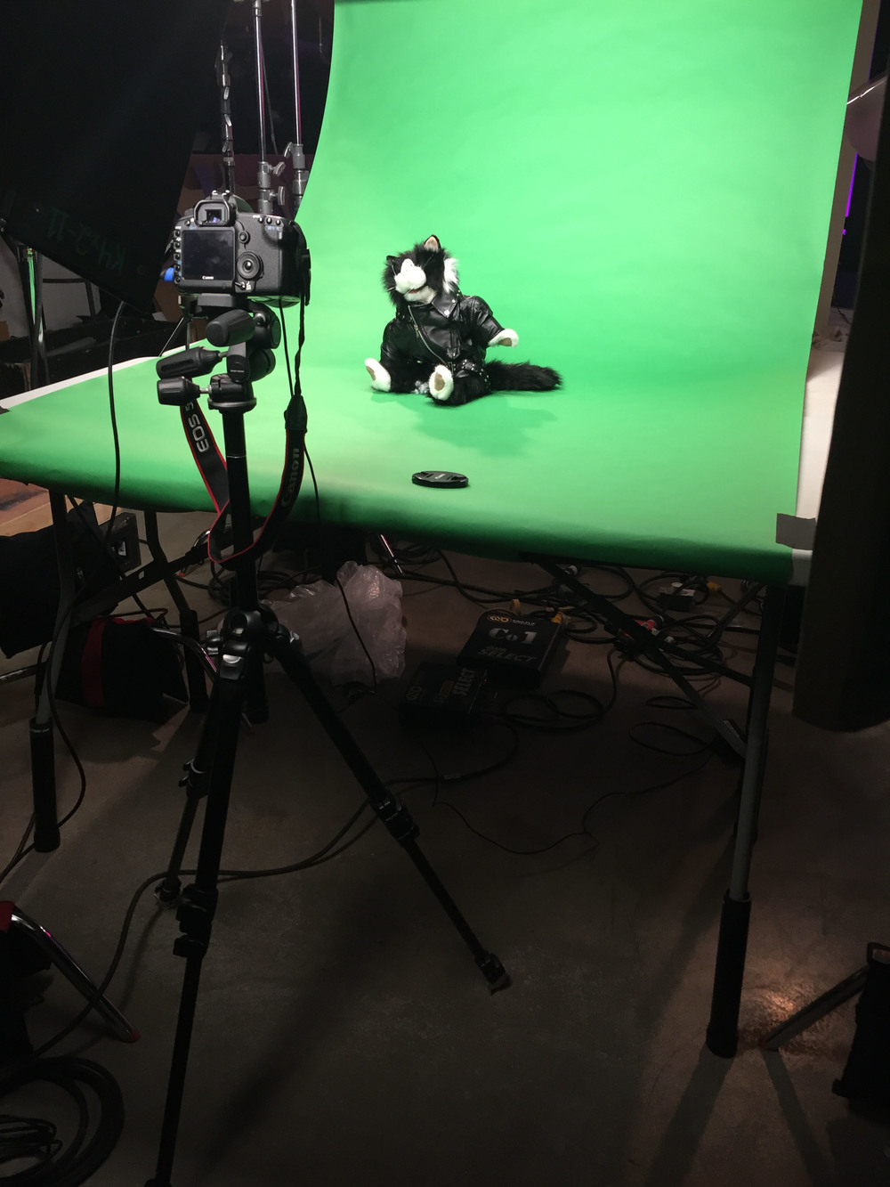 greenscreen-studio.jpg