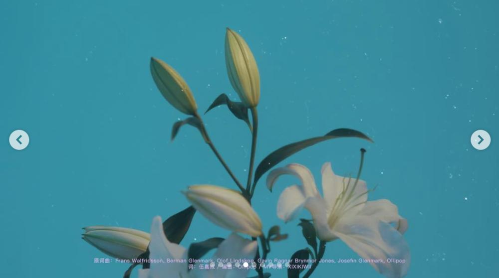 Screen Shot 2019-01-01 at 5.36.25 PM.png