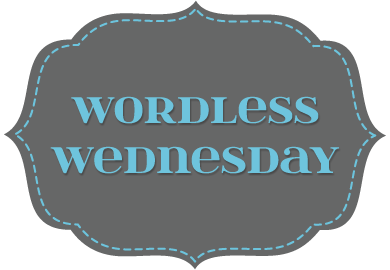 WordlessWednesday_CharcoalBlue_Frame.png