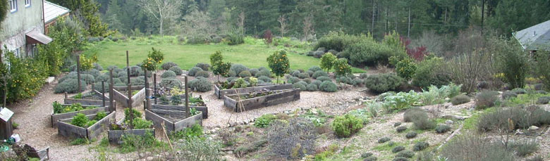raised bed patterns.jpg