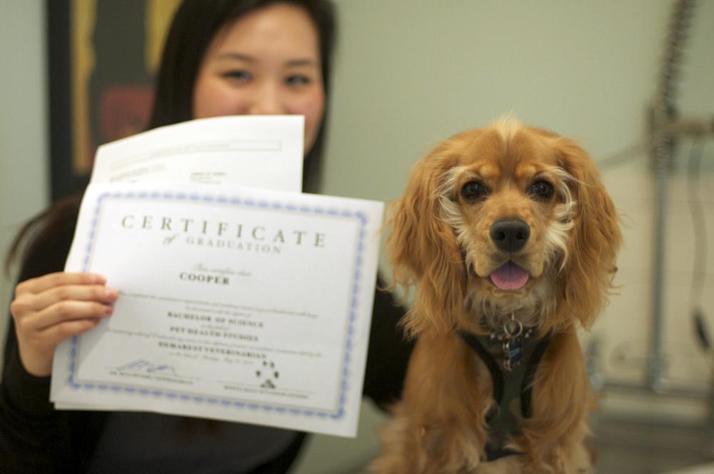 Cooper's Diploma.