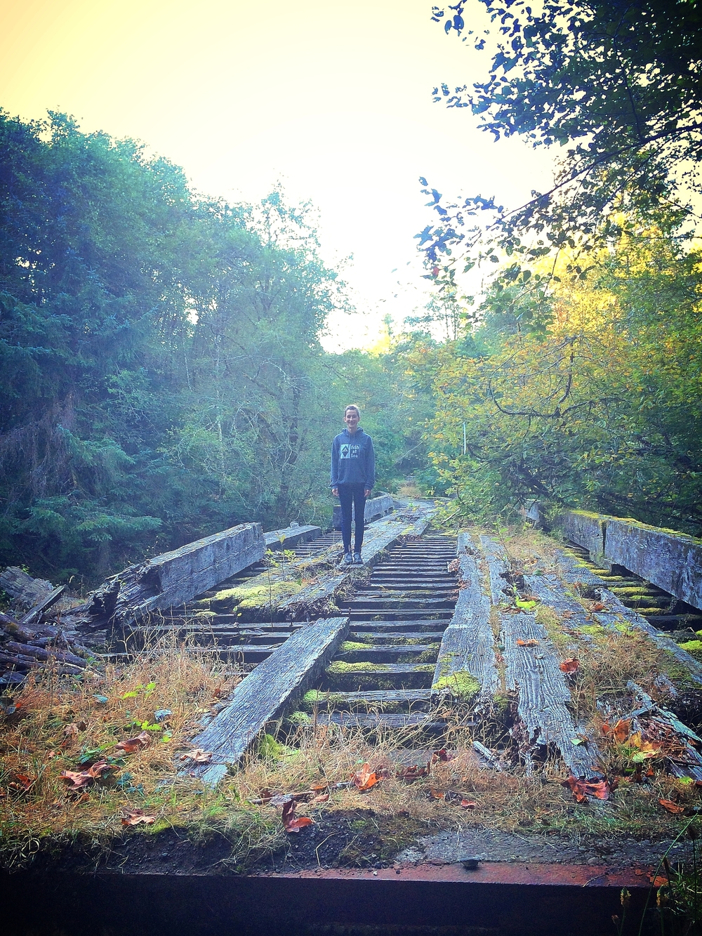 A Rotting Bridge on the Hunting Expedition