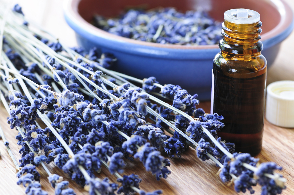 Essential Oils for Beginners, learn the basics to essential oils